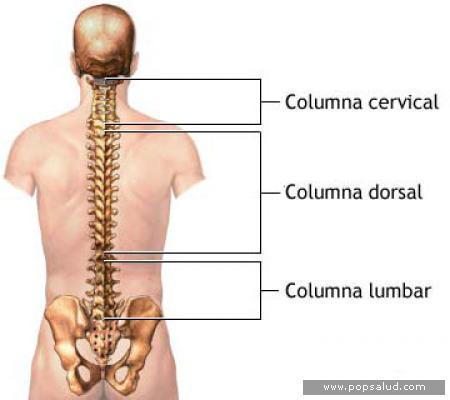 dolor lumbar y cervical