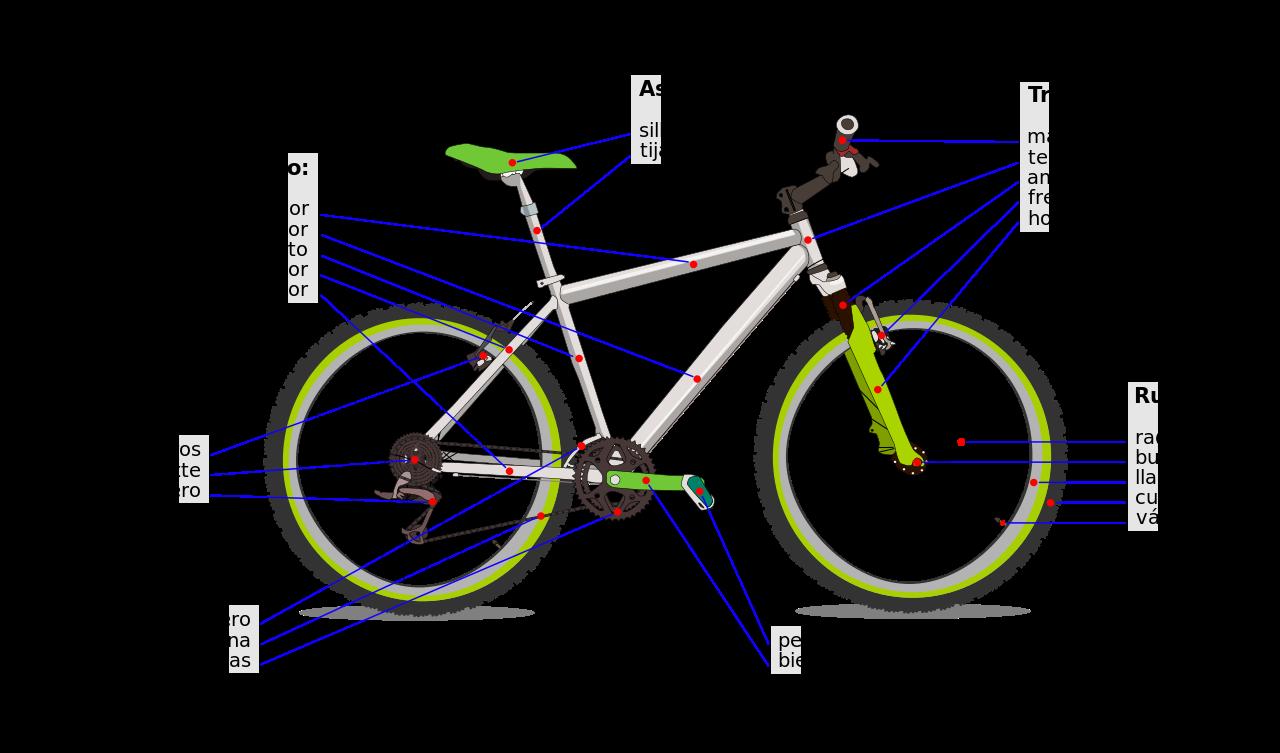 Elementos básicos de la bicicleta. Biciplan.com