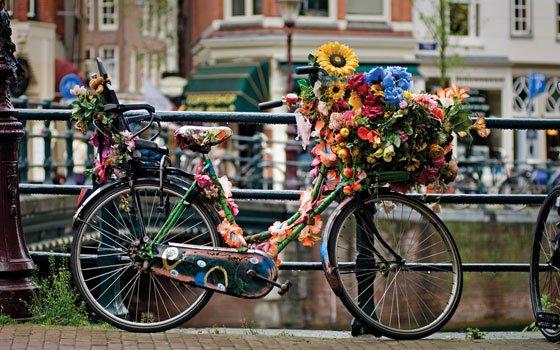 Bici en Ámsterdam Fuente: holland.com