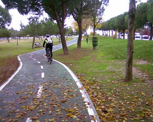 Madrid sobre ruedas Fuente: es.wikiloc.com