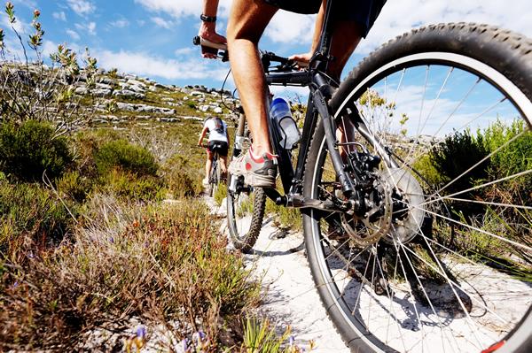 Entrenamientos en bici Fuente:  mtbsubiybaja.es